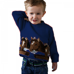 Children's Pony Jumper