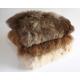 Cushions Rectangular