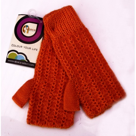 Colour Fingerless Gloves